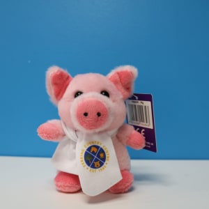 FCC 12cm pig with scarf